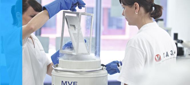 ¿Para qué sirven las células madre del cordón umbilical?