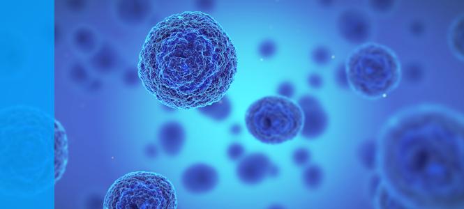 Unidad de producción celular: primer trasplante de piel humana y primer implante de córnea artificial