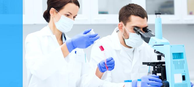 Una terapia génica corrige la beta talasemia, una de las anemias hereditarias más comunes