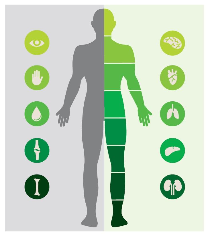 ¿Qué enfermedades pueden tratarse con células madre del cordón umbilical?