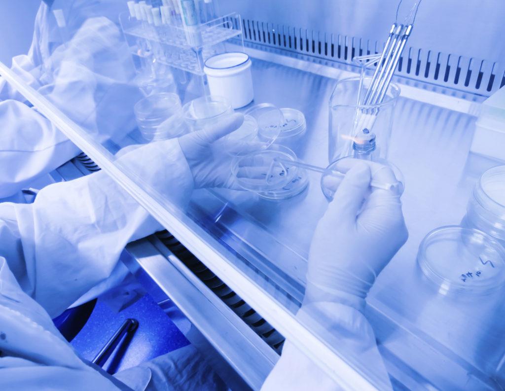 Células madre para tratar las fístulas provocadas por la enfermedad de Crohn