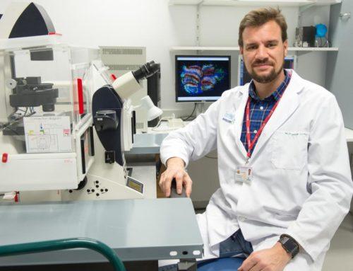 Células madre para curar las úlceras por presión en pacientes con lesión medular