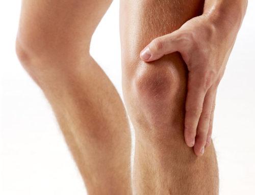 Las células madre y su potencial en futuros tratamientos de artrosis de rodilla